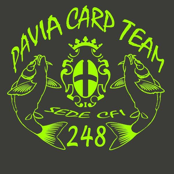 Pavia Nr 248