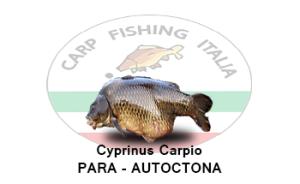 cyprinus-carpio-para-autoctona