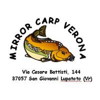 Verona Nr 50