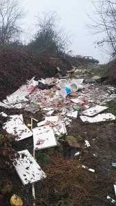 Segnalazione abbandono rifiuti torrente Arda
