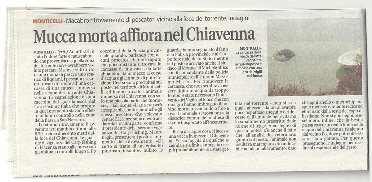 Segnalazione abbandono rifiuti torrente Chiavenna