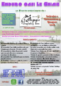Stegugio Carpfishing Team-enduro estate